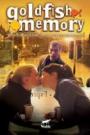 GOLDFISH MEMORY