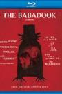 BABADOOK (BLU-RAY), THE