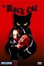 BLACK CAT (1981), THE