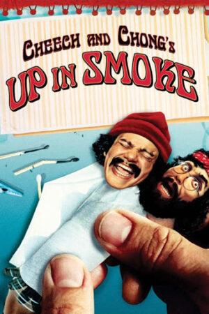DVD Cheech and Chong's Up in Smoke à vendre