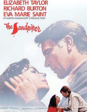The Sandpiper films dvd à vendre
