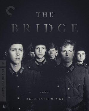 The Bridge DVD Films à vendre.