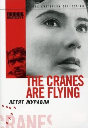 The Cranes Are Flying DVD Films à vendre.