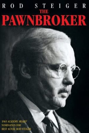 the pawnbroker dvd films à vendre